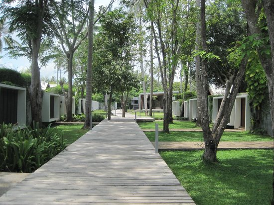 X2 Koh Samui Resort - All Spa Inclusive: Wooden walk way