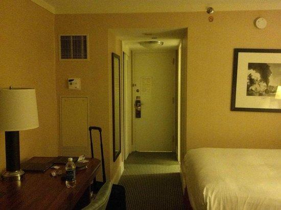 Hilton Stamford Hotel & Executive Meeting Center: view3