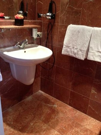 Hotel de Pauwenhof: bath
