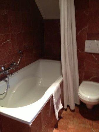 Hotel de Pauwenhof: shower tub