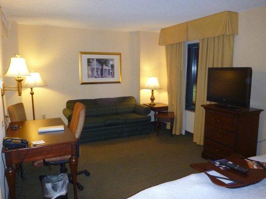 Hampton Inn & Suites Tampa/Ybor City/Downtown: Room