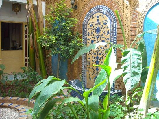 Riad Habib : l'entrée