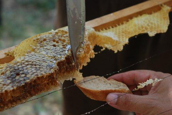 The Inn at English Harbour: Homemade Honey