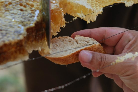 The Inn at English Harbour: Homemade Honey and bread