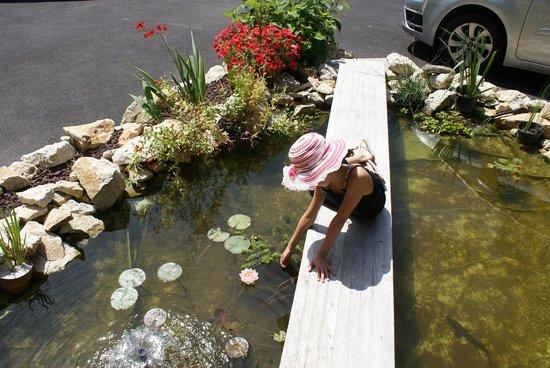 Chambre d'Hotes La Douelle : bassin
