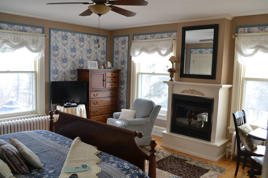 A G Thomson House Bed and Breakfast: The New Salyards Fireplace