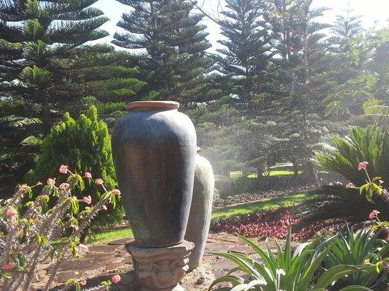 Los Arroyos Verdes: amazing Gardens