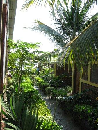 Hospedaje Buena Vista: Eingang zum Hotelgelände