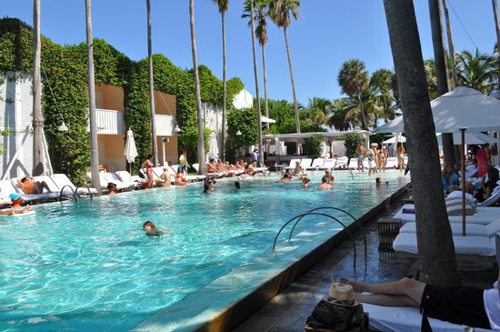 Delano South Beach Hotel: piscina sempre agitada !