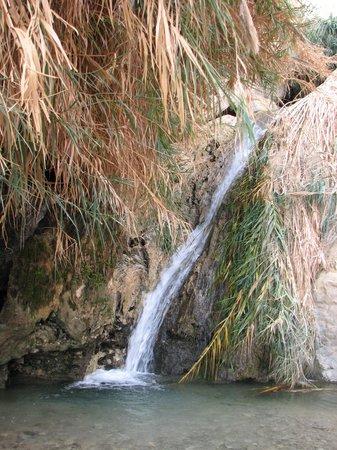 Dead Sea Region ภาพถ่าย