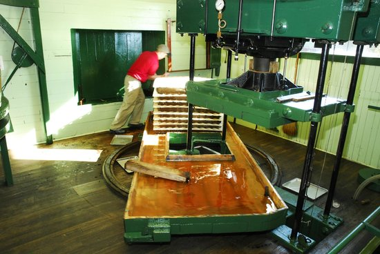 Fly Creek Cider Mill & Orchard: Turning the Pressing Tray at the Fly Creek Cider Mill