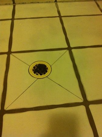Mooloolaba Beach Backpackers: hair in private room shower drain