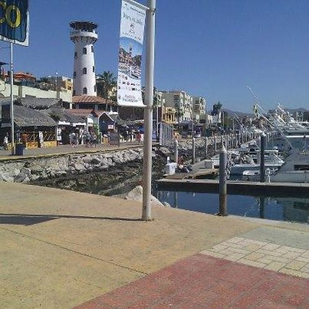 Marlin Alley: Cabo marina where we shipped out for fishing
