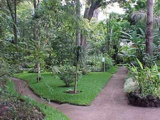 Jardin botanico guatemala city top tips before you go for Botanico jardin