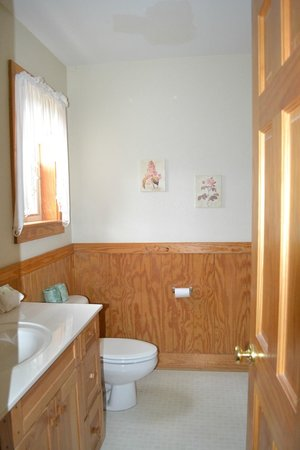 Smoky Mountain Resort, Lodging, & Conference Center: Downstairs bathroom in Chalet 1