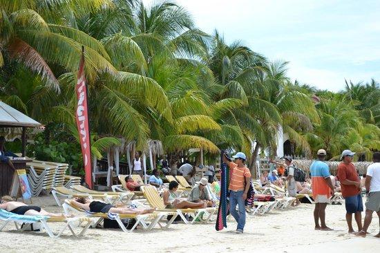 Mayan Day Passes : Mayan Princess beach