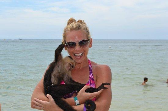 Mayan Day Passes : Roatan beach monkey!