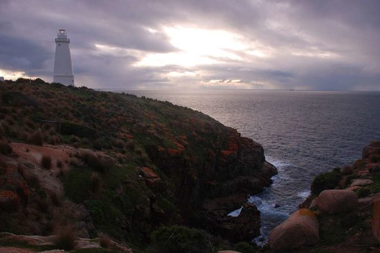 Cape Willoughby Lighthouse Keepers Heritage Accommodation: Coastline at Cape Willoughby