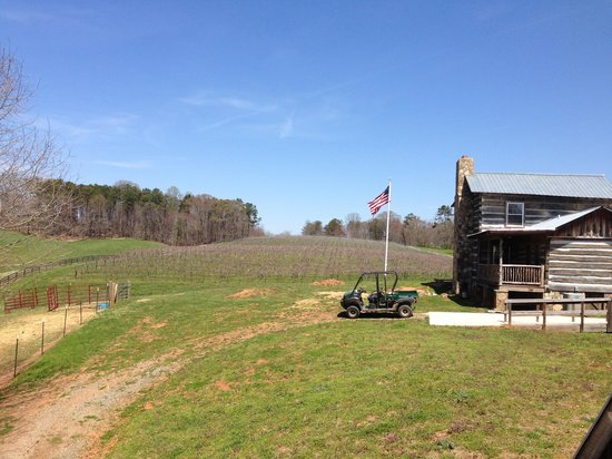Cavender Creek Vineyards : View from the back deck