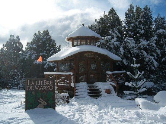 La Liebre de Marzo: La Nieve en La liebre