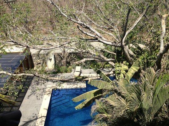 La Esquina Complex: View of Pool from Penthouse Deck - Unit #5