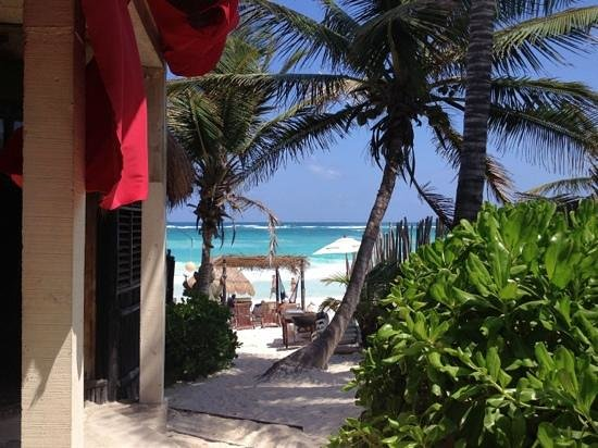 Om Tulum Hotel Cabanas and Beach Club: what could be a better view ?