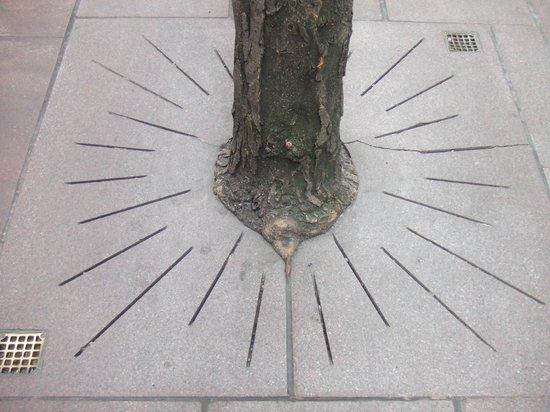 Paley Park: This way...