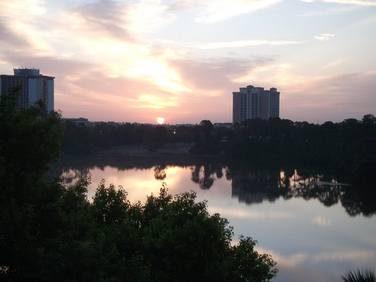 Hilton Orlando Buena Vista Palace Disney Springs: View from our room at sunrise