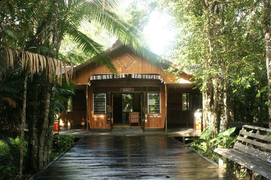 Rimba Orangutan Eco Lodge: Entrance