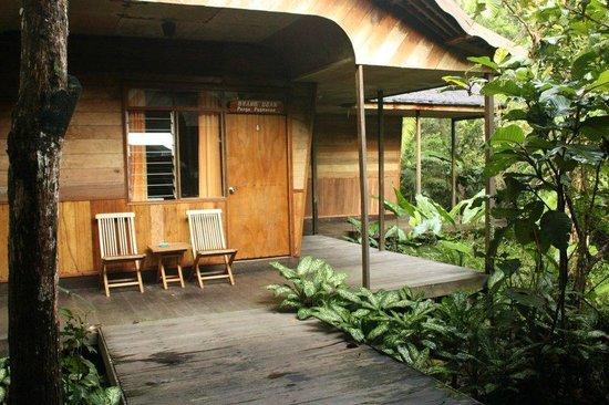 Rimba Orangutan Eco Lodge: Rooms