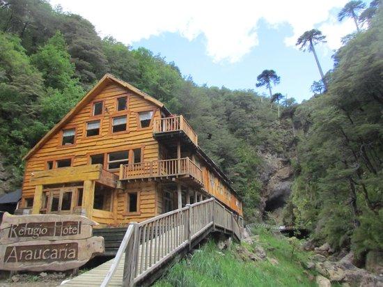 Hotel Termas de Tolhuaca: refugio araucaria