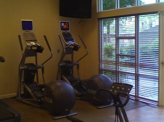Hilton Grand Vacations on Paradise (Convention Center): One corner of the gym overlooking the pool