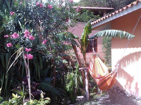 Casa Mariposa: garden
