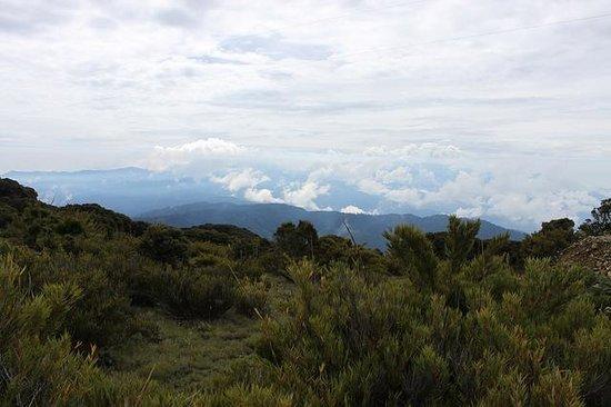 Cerro de la Muerte (Peak of Death)