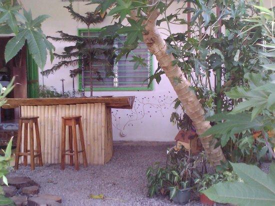 Hostal Suenos Del Rio: yard