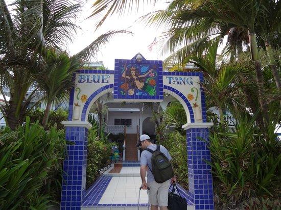 Blue Tang Inn: Entrance
