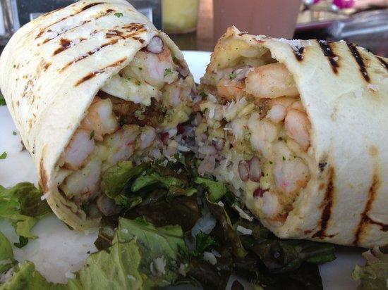 Taco Bar Restaurant: Shrimp coconut sauce burrito