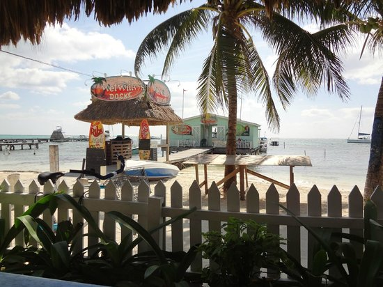 Blue Tang Inn: View from shaded front beach area