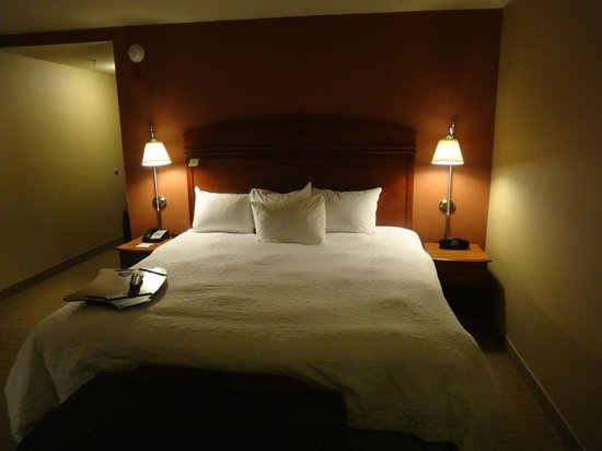 Hampton Inn & Suites Providence/Smithfield: King bed room
