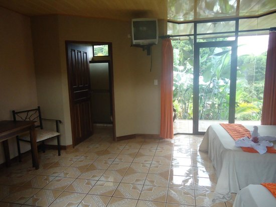 Ara Ambigua Lodge : View from front door