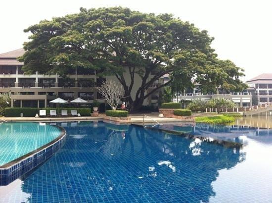 Le Meridien Chiang Rai Resort : pool :)