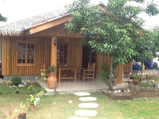 Bituon Beach Resort Bohol Website