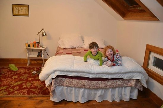 Inn BTween Farm Bed and Breakfast: Very comfortable bed, view of the stars from the skylight
