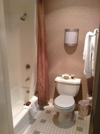 Hotel Griffon: small bathroom