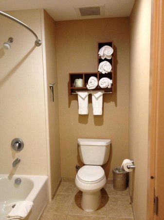 Hampton Inn & Suites Folsom : Bathroom