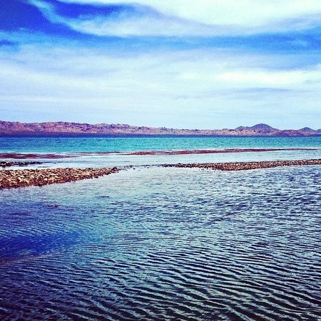 Magdalena Bay Whales: View from the beach