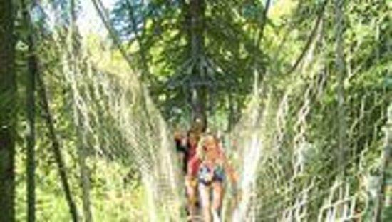 Egeskov Castle: Tree top Walking at Egeskov