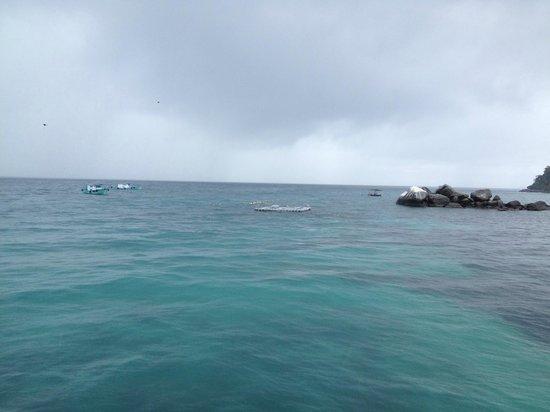 Paya Beach Spa and Dive Resort: sea view