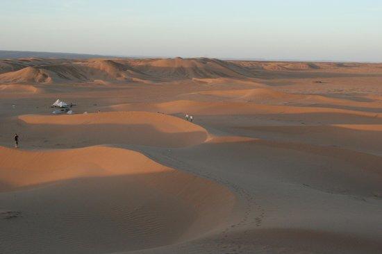 Dune Galerie