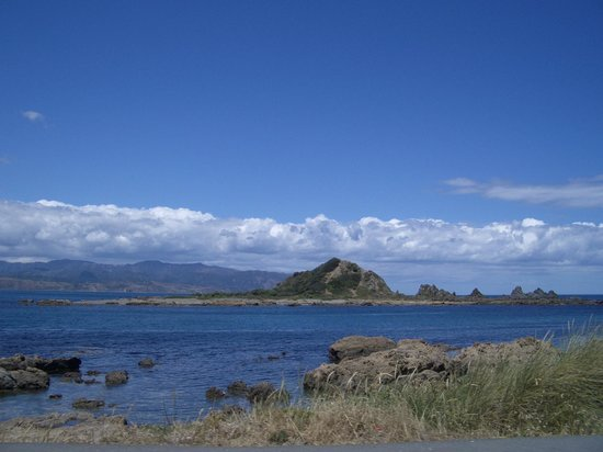 Island Bay Photo